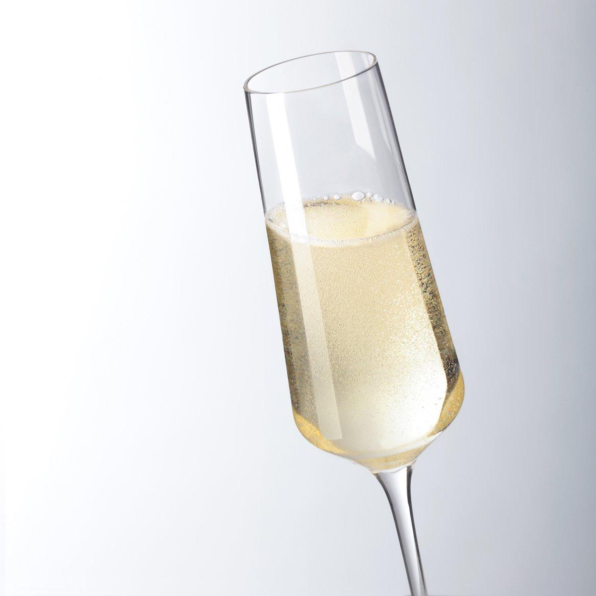 61DZvx3bZ9L. SL1200  - Pahar pentru șampanie Puccini 280 ml (L069550)