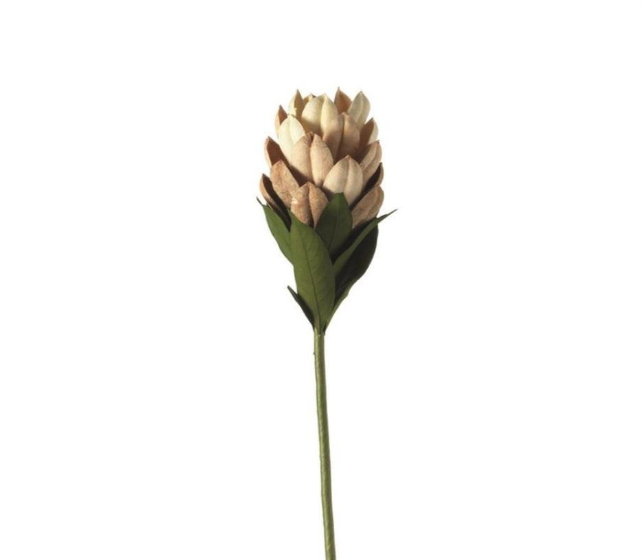 ghjutk 1 - Floare decorativă Flower natur 50 cm (L062972)