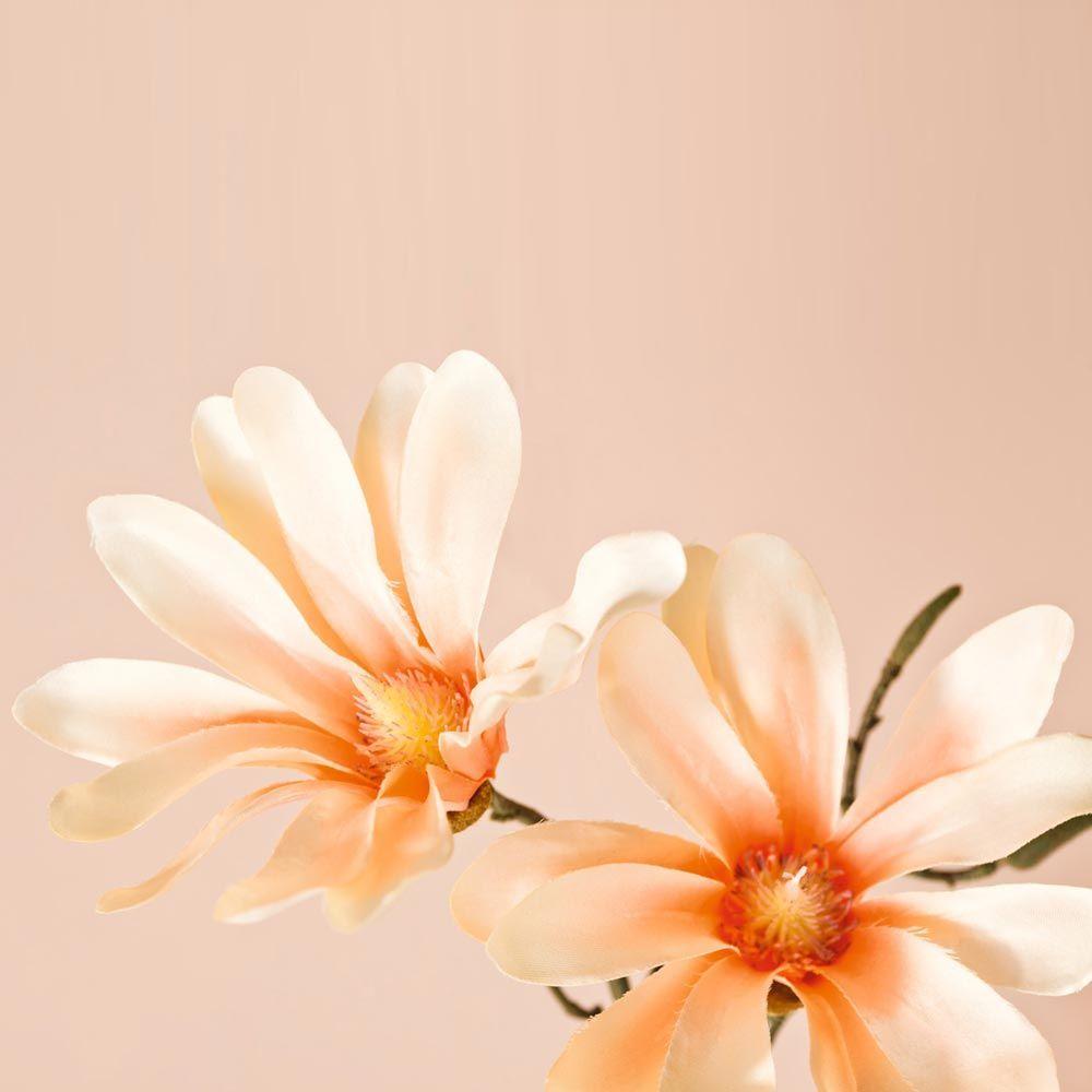 031599 5 k - Floare decorativă Magnolia apricot fine 42 cm (L031598)