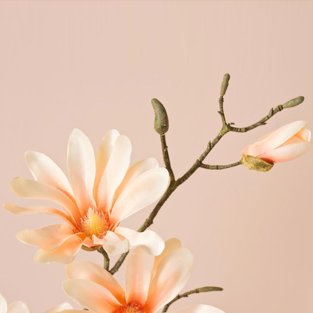 031599 6 k - Floare decorativă Magnolia apricot fine 42 cm (L031598)