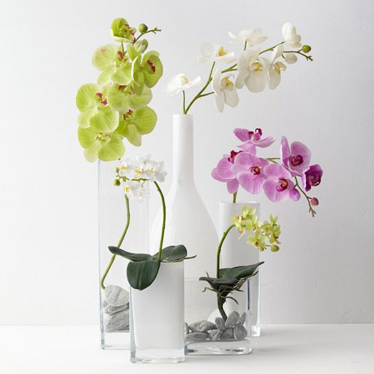 083056 1 k - Floare decorativă Orchid Basic cream 85 cm (L083056)