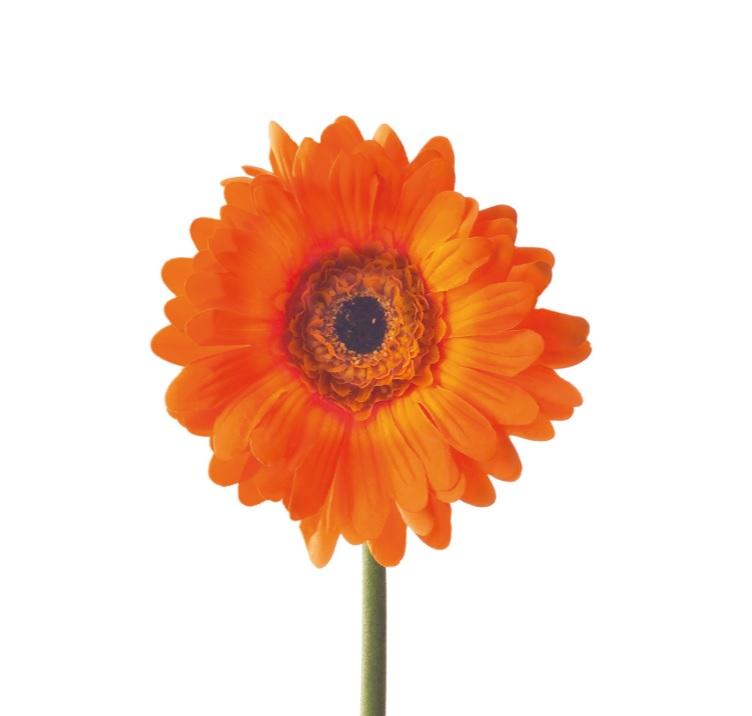 bnhm - Floare decorativă Gerbera orange 50 cm (L056962)