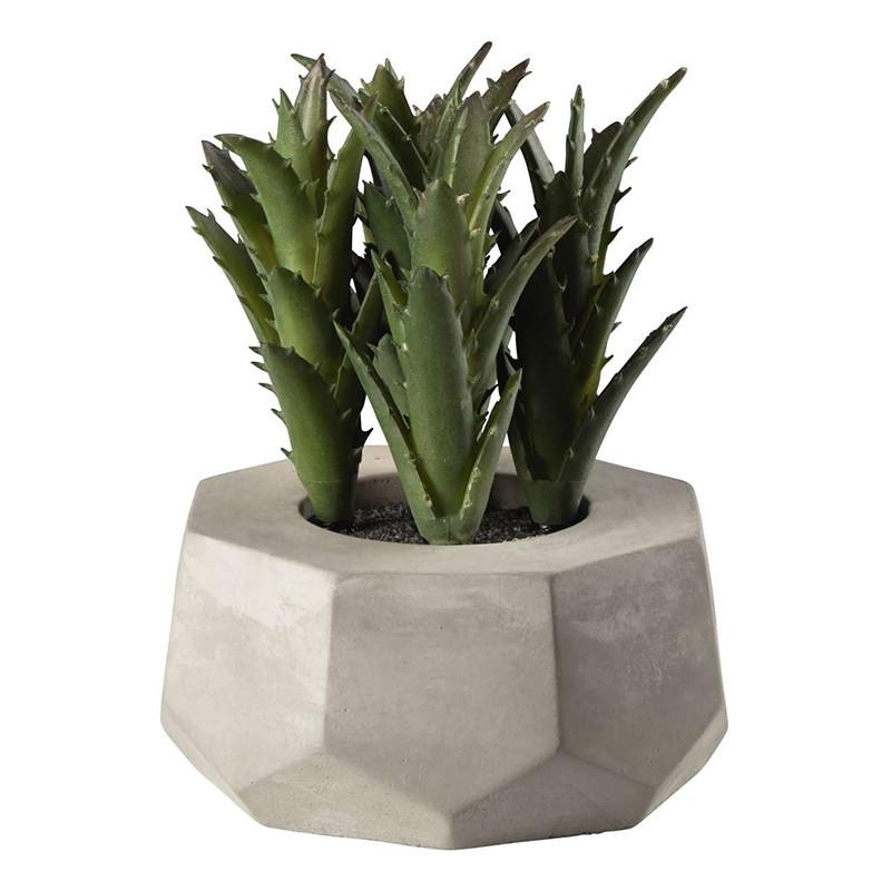 1 39 215 - Decor Succulent green ASA Selection (66253444)