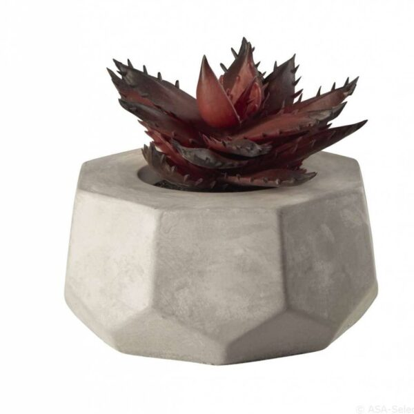 ASA 66256444 sukkulente Beleg Trendxpress 600x600 - Decor Succulent red ASA Selection (66256444)