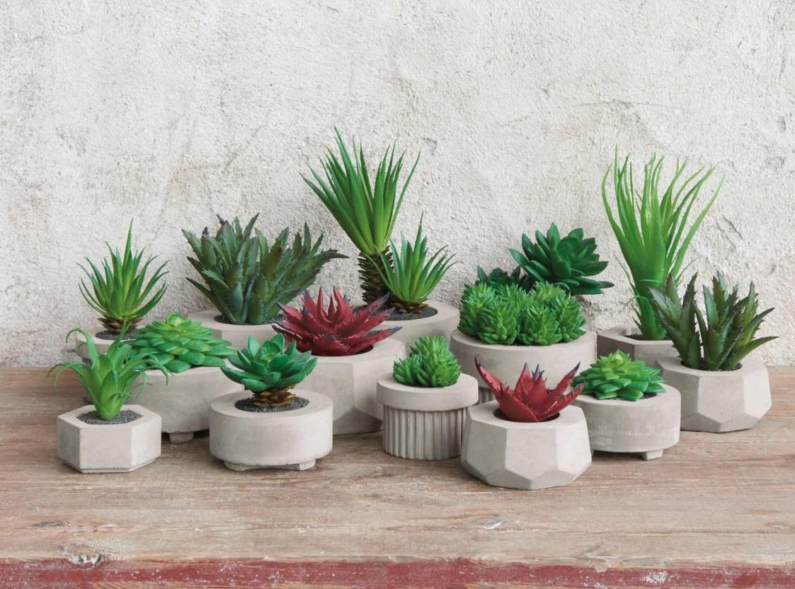 ASA Sukkulenten 02 Beleg Trendxpress - Decor Succulent green ASA Selection (66255444)