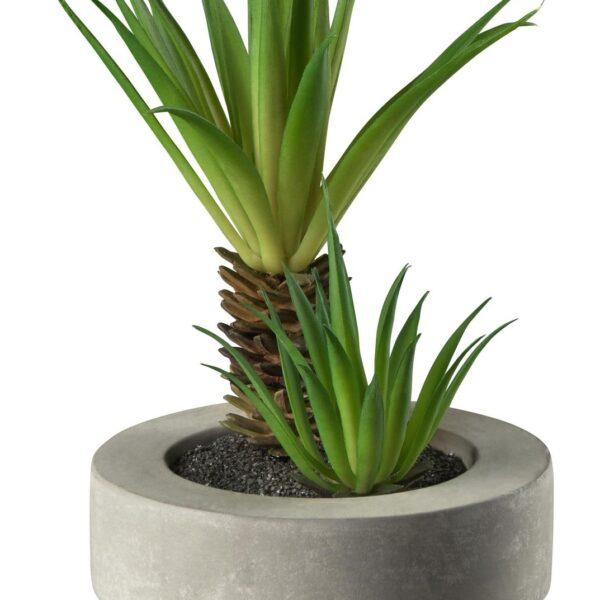 d16b85d2dcc611923424ea70ecc9b981 1 600x600 - Decor Succulent green ASA Selection (66255444)